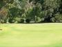 treasure-bay-golf